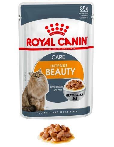 Maltbys' Stores 1904 Limited 96 x 85 g (Nassbeutel) Royal Canin Intense Beauty Care (in Gravy) Katzenfutter